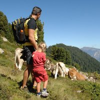Father and daughter trekking on Cermis  - Family trekking along Cermis paths