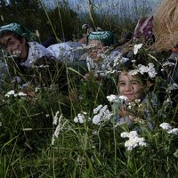 Children have fun on the Cermis  - Children play in the grass (NB refuso: nell