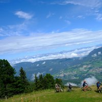 Family-friendly mountain bike tracks  - Beautiful MTB track in Val di Fiemme