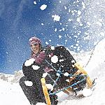 Relaxing in Val di Fassa.. choose your way to do it! - ...a sledge and a lot of snow spray!