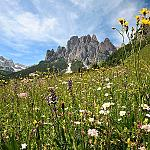 Summer Holiday in Val di Fassa - Unerasable holidays stuck into your heart!