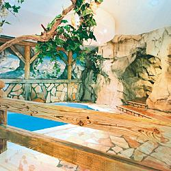 Grand Chalet Soreghes  - Hotel Grand chalet soreghes Campitello di fassa zona wellness and fitness