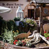 Holiday in Cavalese Val di Fiemme - Hotel Garnì Laurino_RM33449